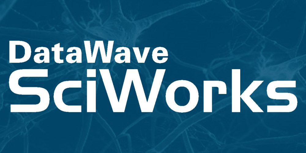 Image for link to Datawave Sciworks Data Acquisition & Analysis System