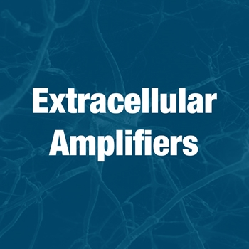 Extracellular Amplifiers